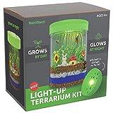 Kit Terrario Iluminado para niños con luz LED en la Tapa   Cree su propio Mini Jardín personalizado en un Frasco que Brilla de Noche   Grandes kits de ciencia regalos para niños   Juguetes para niños