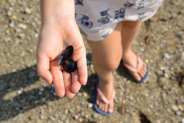Niño con concha en la mano