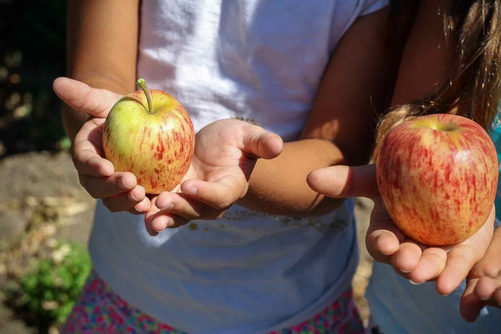 Niños sujetando manzanas